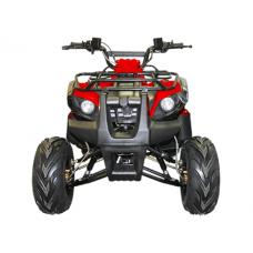 Квадроцикл Irbis ATV 125 Um